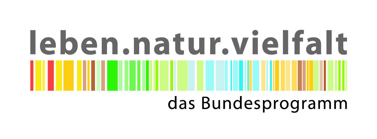 logo_nbs_transp_png