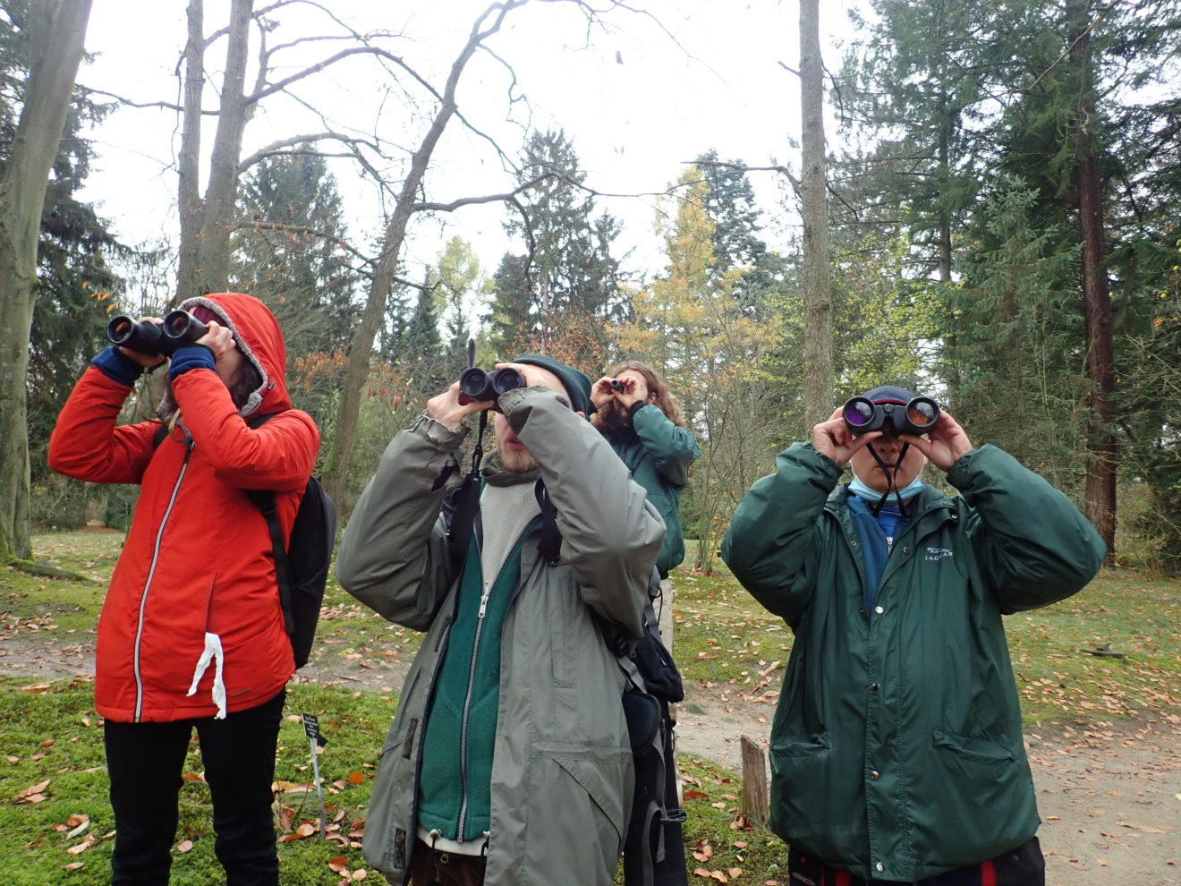 Vogelkunde im Forstbotanischen Garten